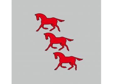 Dusetų vėliava