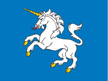 Merkinės vėliava
