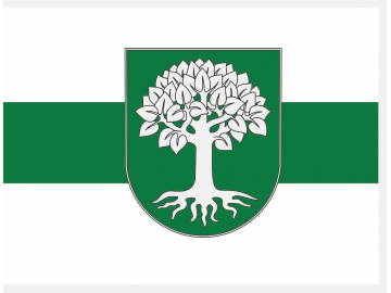 Sidabravo vėliava