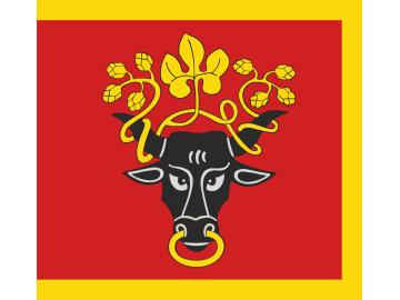 Pasvalio vėliava