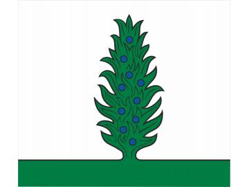 Piliuonos vėliava
