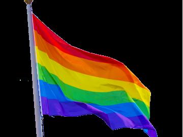 Vaivorykštės, Tolerancijos, LGBT vėliava